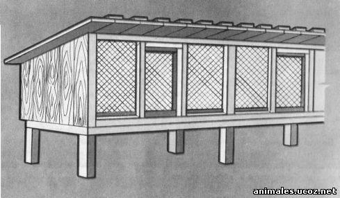 Крольчатники: схемы для постройки крольчатника (клетки для кроликов) .